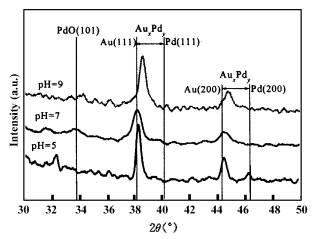 不同金前躯体化合物对合成金钯双金属催化剂活性的影响