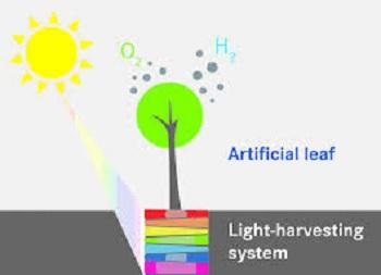 对量子点棒进行表面修饰改性的方法、光合成催化剂的制备