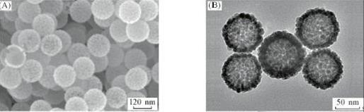 铂-金-铂多层核壳结构纳米粒子的活性